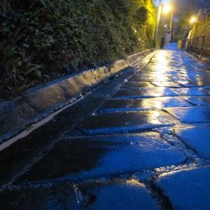 雨のドンドン坂 - 長崎・南山手散策で見つけた美し過ぎる坂道