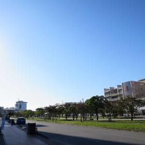 1月の朝のおもろまち - 沖縄県那覇市の那覇新都心