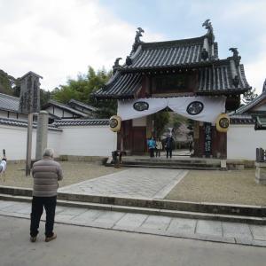 京都宇治 黄檗山萬福寺(万福寺)は中国色濃厚な黄檗宗大本山