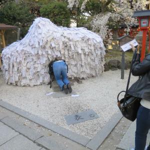 京都の縁切り神社、安井金毘羅宮で悪縁を切る!安井のこんぴらさんへ