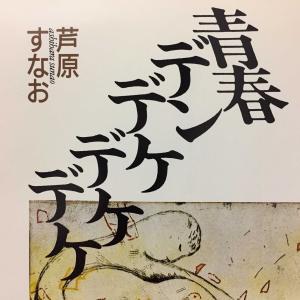 直木賞受賞作品 青春小説「青春デンデケデケデケ」  1960年代後半の西讃地方(讃岐西部)の物語