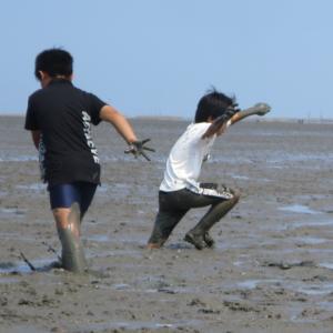 宝の海 有明海 - 干潟体験とムツゴロウ。佐賀「夢しずく」田のおたまじゃくしも