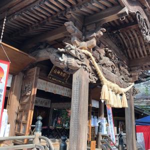 田無神社へ参拝 龍のエネルギーに触れる