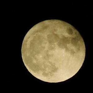 八年ぶりの満月と重なる中秋の名月!