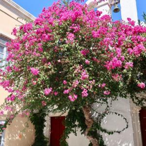 ギリシャ吉方位旅行記更新しました。