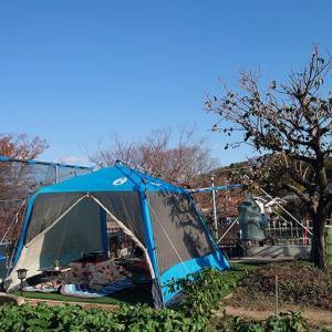海鮮キャンプ(2日目)