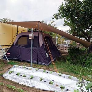 9月の連休庭キャンプ(1日目)