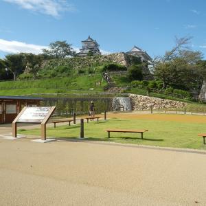 浜松城公園散歩