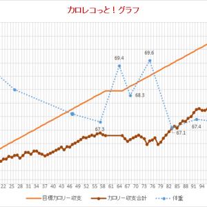 101~117日目 第2部終了~目標体重まで減量できたか