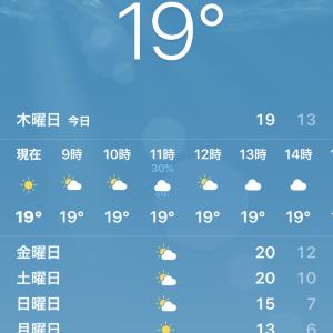 日式居酒屋「大吉」でたこ焼食べながら野球観戦@中国 大連 民主広場 経典生活