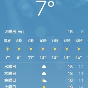 祝開店1周年「焼鳥バル鳥小屋」@中国 北京