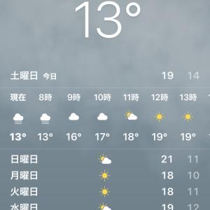 祝16周年 胜代大連中山店(かっちゃん)で焼そばランチ@中国 大連 人民路