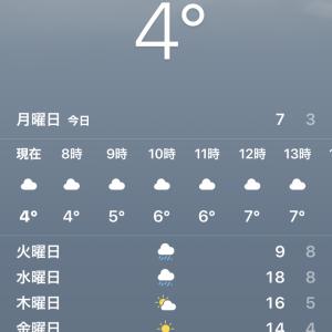餃子の王将武蔵溝ノ口駅前店で味噌ラーメンと炒飯