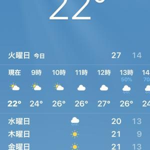 NHK プロジェクトX「緊急企画!プロのおうちごはん 第1弾」 タサン志麻さんの「オーブンいらずのローストビーフ」最高!@STAY HOME