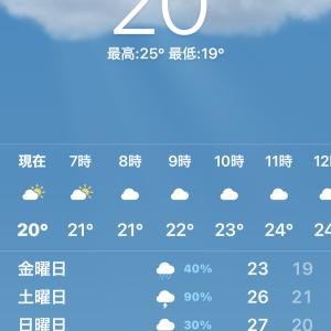 餃子の王将 武蔵溝ノ口駅前店で味噌ラーメンとジャストサイズ焼飯