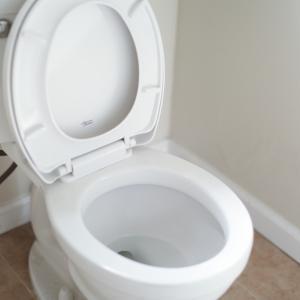 トイレにおすすめ!使ってよかったアクセントクロスの事例【全8選】