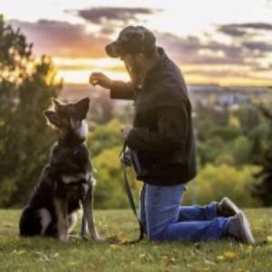 「最高にハッピー」❗️動物達と家族の愛情💕