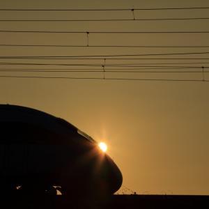 鹿児島本線の朝陽の中を駆けて行く885系特急「白いかもめ」(原田~天拝山)