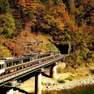 高山本線の紅葉渓谷を行くキハ85系特急「ワイドビューひだ号」(角川~坂上)