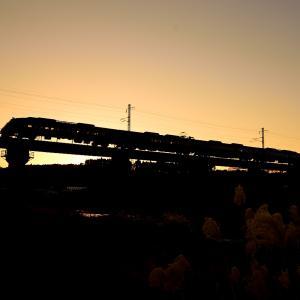 日豊本線の夕闇迫る田野~青井岳を行く787系特急「きりしま号」他(田野~青井)