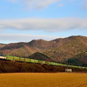 山陽本線の初冬の船坂峠を行くEF66牽引の福山通運エキスプレス(三石~上郡)