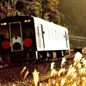 肥薩おれんじ鉄道(旧鹿児島本線)の海岸沿いを行くHPSAR形(肥後二見~上田浦)