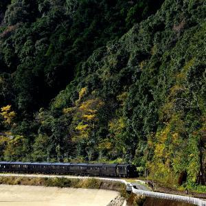 肥薩線の秋の球磨川沿いを行く「ななつin星九州」他(海路~吉尾)