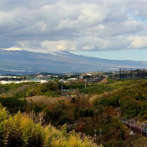 東海道本線の富士山のすそのを行くEF210牽引のコンテナ貨物他(三島~函南)