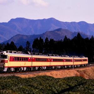 紀勢本線を走行する懐かしのキハ82系特急「南紀」他と夕暮れの茶畑風景(栃原~佐奈)
