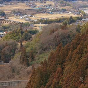 中央西線の坂下の冬枯れの谷を行くEF64重連牽引の石油輸送列車(坂下~落合)