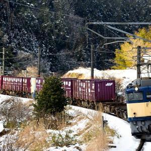 伯備線の積雪風景を行くEF64牽引のコンテナ貨物他(下石見信~上石見間)