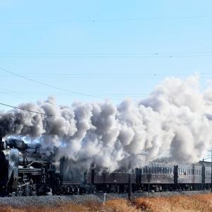 上越線の定番撮影地を白煙を吐きながら進むD51-498号機牽引「SLみなかみ号」他(渋川~八木原)