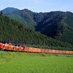 紀勢本線の杉木立の山々をバックに進む懐かしのDD51重連貨物列車他(大内山~梅ケ谷)