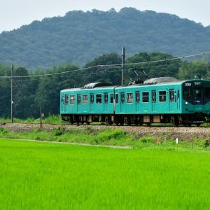 加古川線の夏の水田風景を行く103系電車(小野町~粟生)