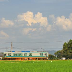 加古川線の夏の田舎風景を行く125系電車と103系電車(青野ヶ原~河合西)
