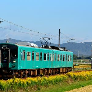 加古川線の晩秋の田園風景の中を行く103系ローカル電車(青野ヶ原~河合西)