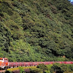 美祢線の盛夏の峠道を行くDE10牽引の石灰石列車とキハ120形単行ローカル列車(厚保~四郎ケ原)