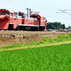 北陸本線の初夏の緑の稲のカーペットを行くDE-1541形ラッセル車他(動橋~粟津)