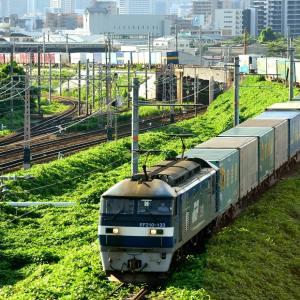 東海道本線の加島陸橋の夏草が生い茂る線路を行く桃太郎ことEF210牽引のコンテナ貨物(塚本信~尼崎)