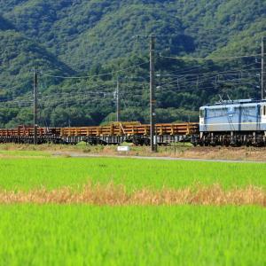 山陽本線の夏の田園風景を行くEF65-1128号機牽引のレール輸送列車他(三石~上郡)