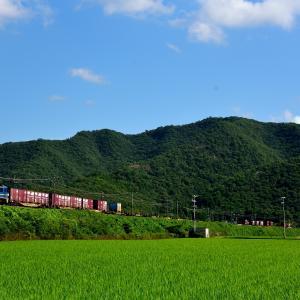 山陽本線の夏の青空をバックに船坂峠に向かうEF210牽引のコンテナ貨物(三石~上郡)
