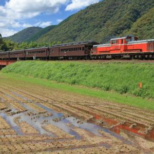 山口線の初秋を行くDD51ー1043号機牽引の「DLやまぐち号」他(長門峡~渡川)