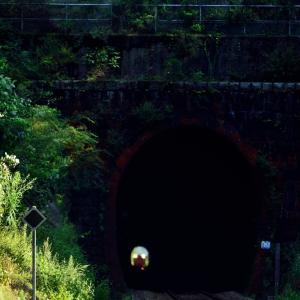 山口線の白井トンネルを通過するキハ47系気動車(津和野~船平山)