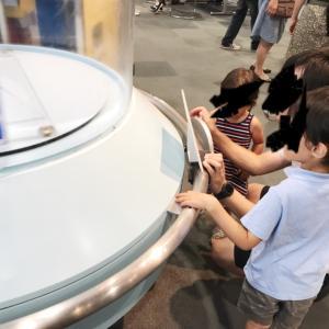 我が家の安あがりな夏休みその2。2歳児も楽しめた!大阪市立科学館に行ってきた!