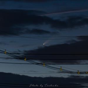 彗星狂騒曲~夕暮れVer~