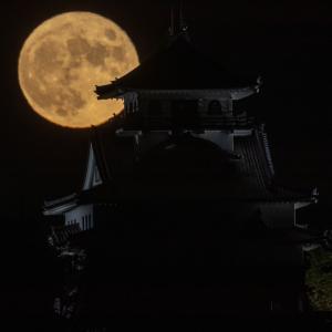 中秋の名月と河原城