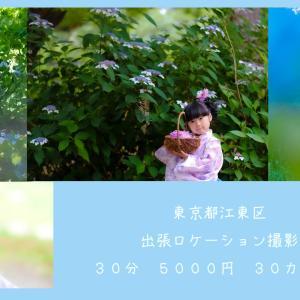 まもなく終了~ 紫陽花のロケーション撮影会