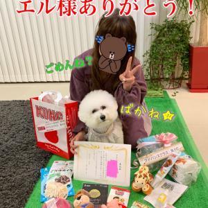 ドッグダンス日本大会★BBAがオヤツぶちまけ事件!!ブログネタかよ。