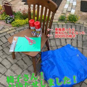 庭に「赤い椅子のある風景」を作る★テキトーDIYだいたいでイイよ