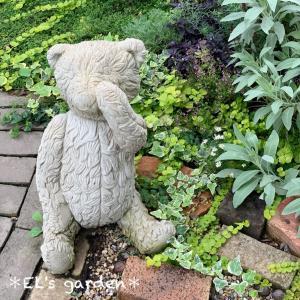夏の雑草抜きがツライ奥様に…草むしりが楽になる庭テクニック